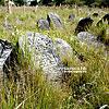 Киркут (еврейское кладбище)
