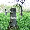 Ancient cemetery, Dmytrovychi village