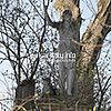 Фігура Івана Хрестителя біля костелу (кін. XVIII ст.)