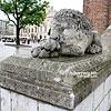 Скульптури левів біля Ратуші