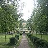 The park near the palace
